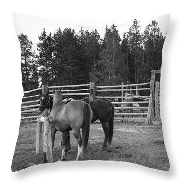 Mountain Corrals Throw Pillow
