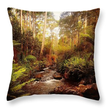 Mountain Creek Throw Pillow