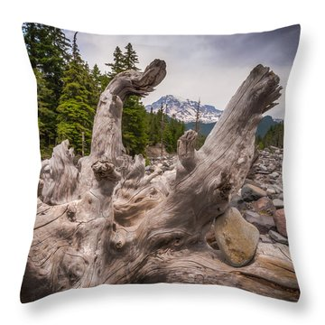 Mountain Dry River Throw Pillow by Chris McKenna
