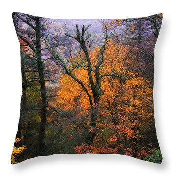 Throw Pillow featuring the photograph Mountain Fall Colors by Ken Barrett