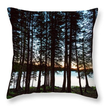 Throw Pillow featuring the photograph Mountain Forest Lake by James BO Insogna