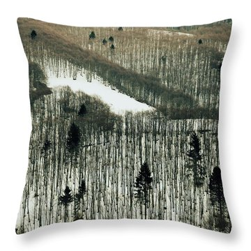 Mountain Forest Throw Pillow