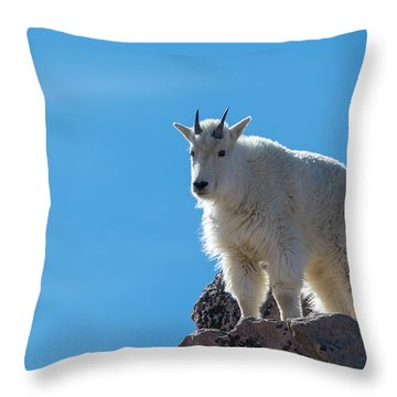 Throw Pillow featuring the photograph Mountain Goat 4 by Gary Lengyel