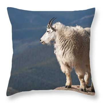 Throw Pillow featuring the photograph Mountain Goat by Gary Lengyel