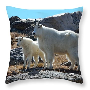 Mountain Goat Mother And Kid Throw Pillow