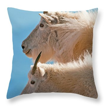 Throw Pillow featuring the photograph Mountain Goats by Gary Lengyel