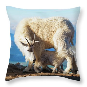 Mountain Goats Nanny And Kid Throw Pillow