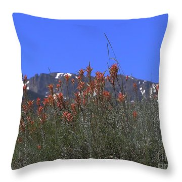 Mountain Gradure Throw Pillow