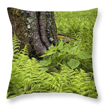 Mountain Green Ferns Throw Pillow