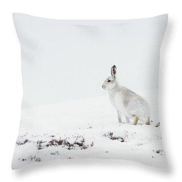 Mountain Hare Side On Throw Pillow