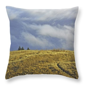 Mountain High Throw Pillow