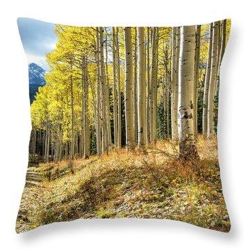 Mountain Highlights Throw Pillow