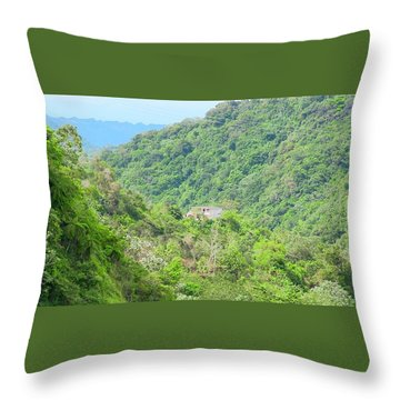 Mountain Home Throw Pillow