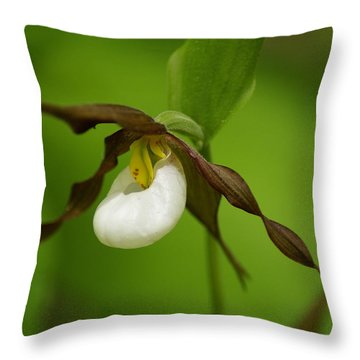 Throw Pillow featuring the photograph Mountain Lady's Slipper by Ben Upham III