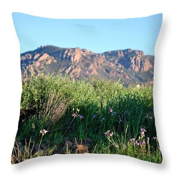 Throw Pillow featuring the photograph Mountain Landscape View - Purple Flowers by Matt Harang