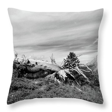 Mountain Landscape With Fallen Tree And View At Alps In Switzerland Throw Pillow