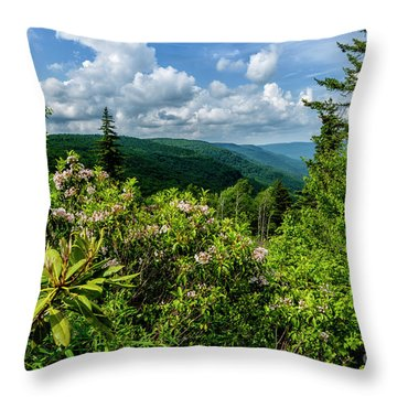 Throw Pillow featuring the photograph Mountain Laurel And Ridges by Thomas R Fletcher
