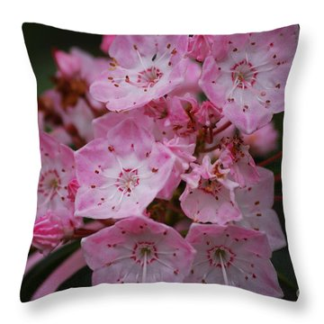 Mountain Laurel Bloom Throw Pillow