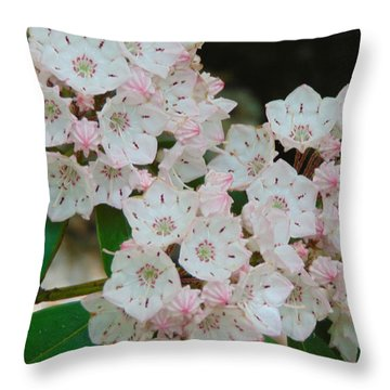 Mountain Laurel Throw Pillow