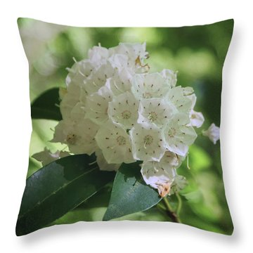 Throw Pillow featuring the photograph Mountain Laurel - Spring by Nikolyn McDonald