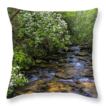 Mountain Laurels Light Up Panther Creek Throw Pillow