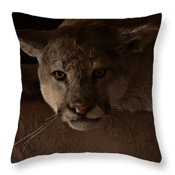 Mountain Lion A Large Graceful Cat Throw Pillow by Christine Till