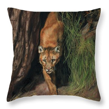 Mountain Lion Emerging From Shadows Throw Pillow by David Stribbling