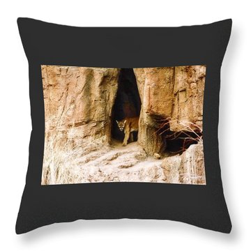 Mountain Lion In The Desert Throw Pillow