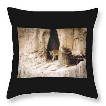 Mountain Lion - Light Throw Pillow