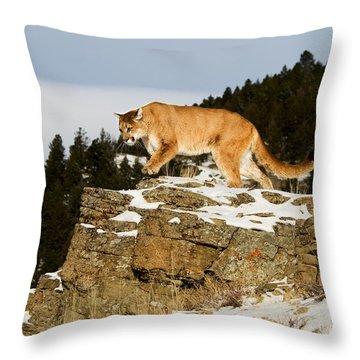 Mountain Lion On Rocks Throw Pillow