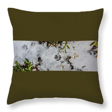 Mountain Lion Tracks In Snow Throw Pillow