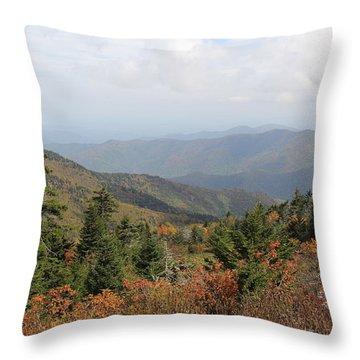 Mountain Long View Throw Pillow