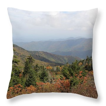 Mountain Long View Throw Pillow