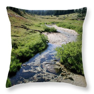 Mountain Meadow And Stream Throw Pillow