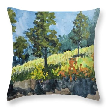 Mountain Meadow Throw Pillow by Bethany Lee