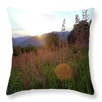 Throw Pillow featuring the photograph Mountain Meadow by Emanuel Tanjala