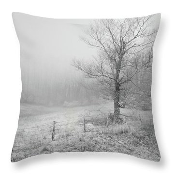 Mountain Mist Throw Pillow by William Beuther