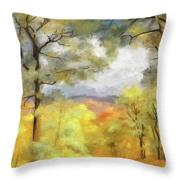 Throw Pillow featuring the photograph Mountain Morning by Lois Bryan