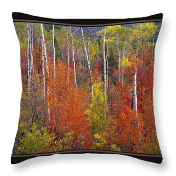 Mountain Of Color Throw Pillow