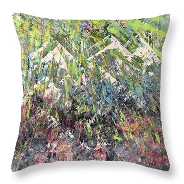 Mountain Of Many Colors Throw Pillow
