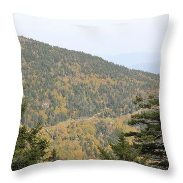 Mountain Passage Throw Pillow