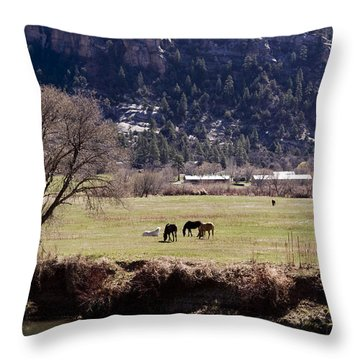 Throw Pillow featuring the photograph Mountain Pasture Vertical by Lorraine Devon Wilke