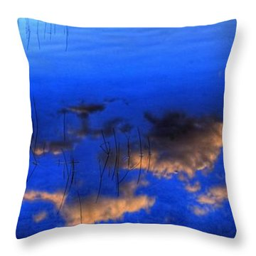 Mountain Reflection Throw Pillow by Sean McDunn