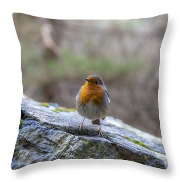 Mountain Robin Throw Pillow