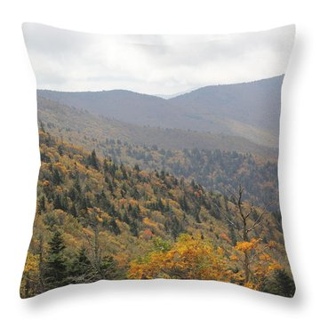 Mountain Side Long View Throw Pillow