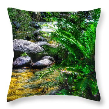 Mountain Stream Throw Pillow by Blair Stuart