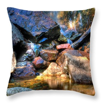 Throw Pillow featuring the photograph Mountain Stream by Greg DeBeck