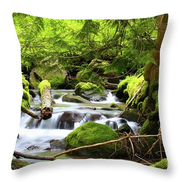 Mountain Stream In The Pacific Northwest Throw Pillow