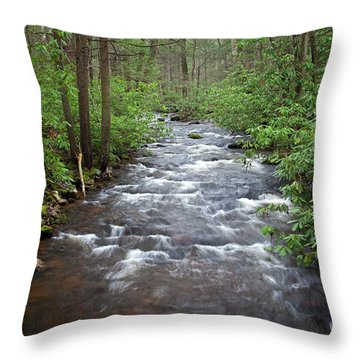 Throw Pillow featuring the photograph Mountain Stream Laurel by John Stephens
