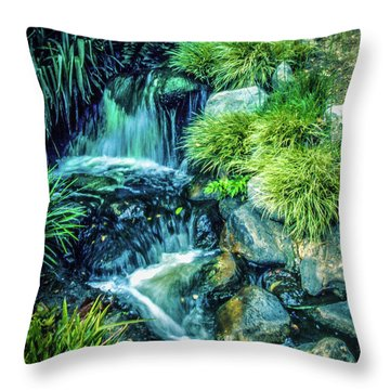 Throw Pillow featuring the photograph Mountain Stream by Samuel M Purvis III